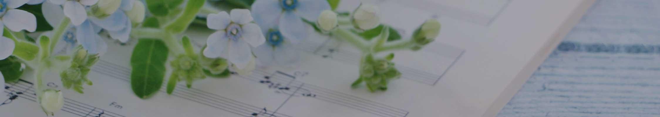 楽譜 写真